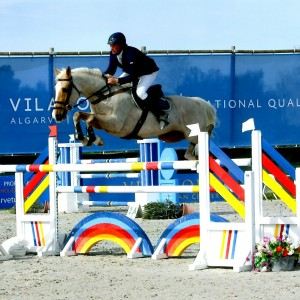Breeding and Producing Quality Sport Horses